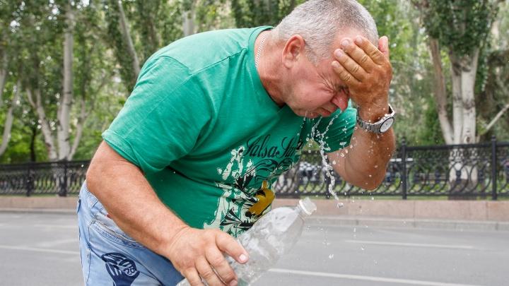 МЧС предупредило волгоградцев о предстоящей жаре до +42 градусов