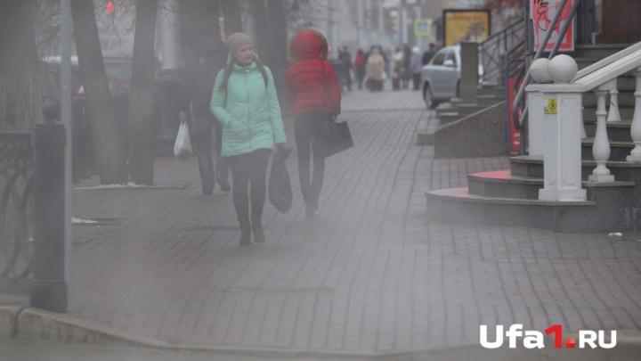 Погода в Башкирии: понедельник будет снежным и туманным