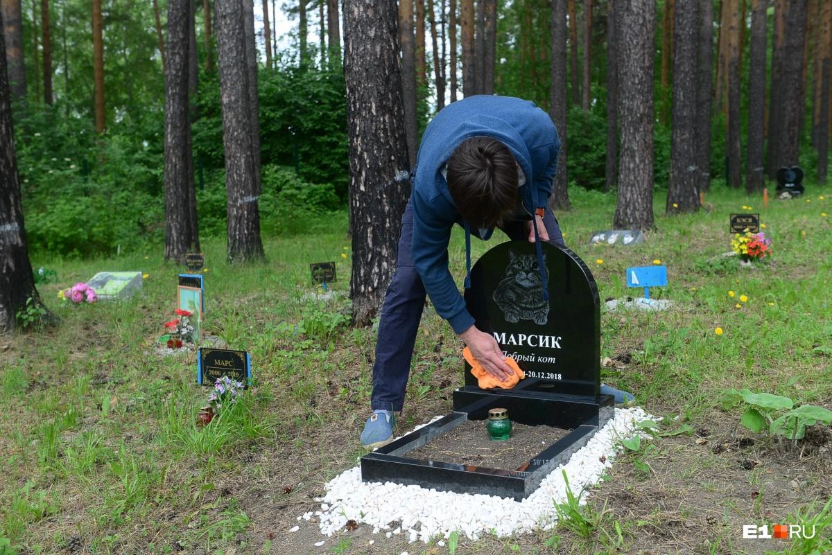 За могилками постоянно ухаживают