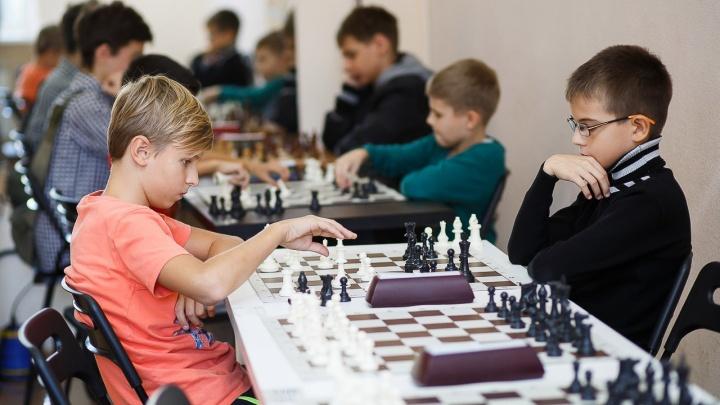 Волгоградцев зовут на шахматные баталии с гроссмейстерами