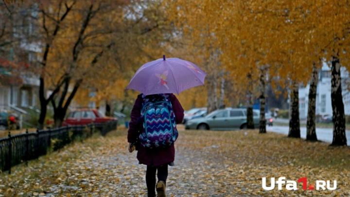 Погода в Башкирии: среда будет снежной и холодной