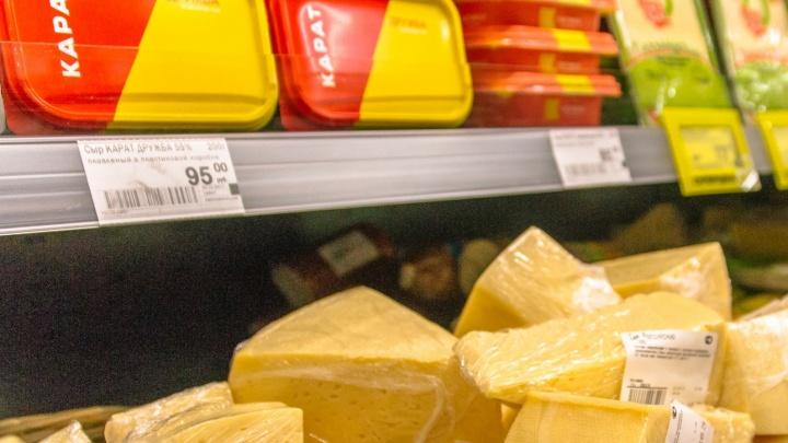 В Самарской области построят завод по изготовлению плавленого сыра