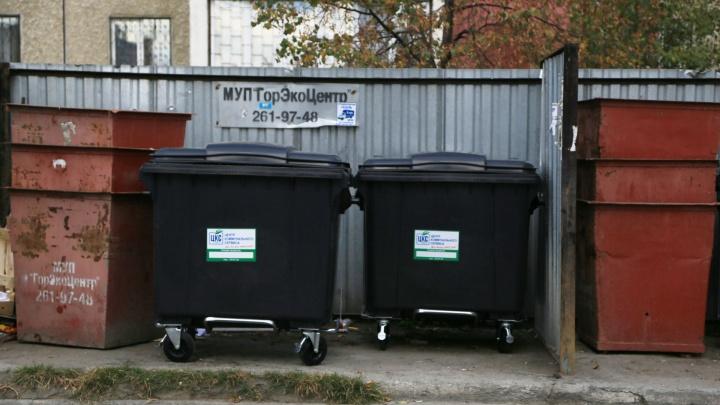 На колёсиках и с крышкой: в челябинских дворах начали ставить новые мусорные контейнеры