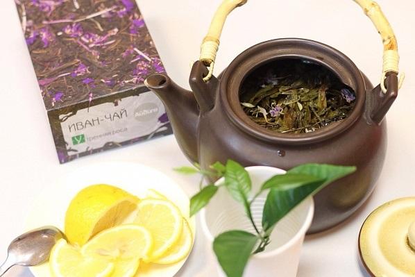 «И немедленно выпил»: уральцам предложили приготовить неожиданные блюда из иван-чая