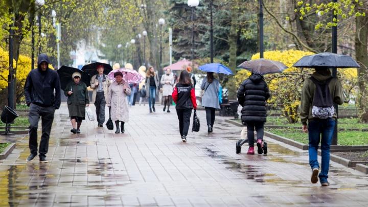 Готовим плащи:какая погода ждет ростовчан в начале недели