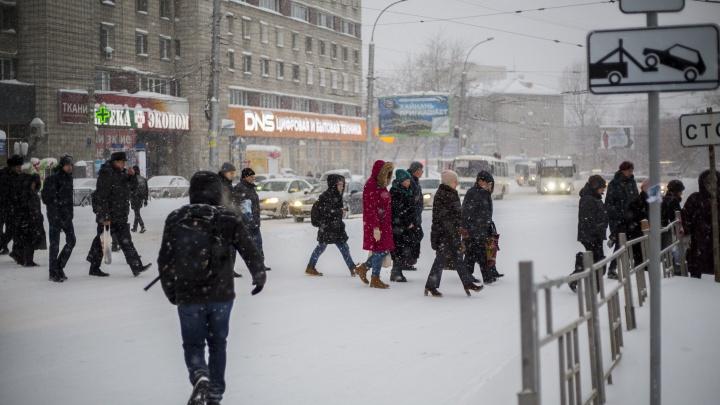 НГС ищет самые опасные места для пешеходов — где часто сбивают людей и где трудно перейти дорогу