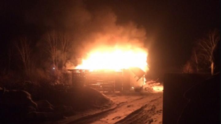 После пожара в СНТ «Якорь» семья с тремя детьми осталась без дома
