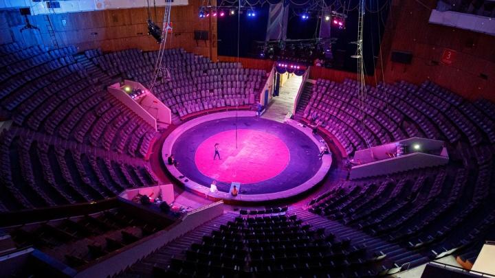 На свободу через арену: волгоградских заключенных перевоспитают цирковым искусством