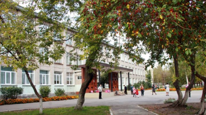 Из-за зачисления детей в первый класс пермской гимназии на родителей возбудили уголовные дела