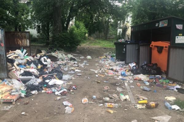 Жители домов уверяют, что в таком виде контейнерные площадки находятся уже месяц