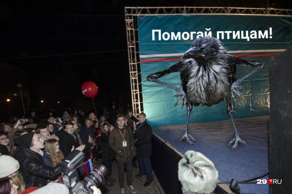 3 февраля на площади Терёхина вместо антимусорного митинга пройдет акция «Трудно птицам зимовать —надо птахам помогать»