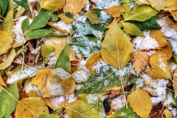 Осень начнётся с заморозков
