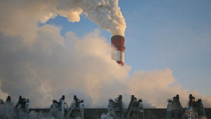 Эксперты заметили улучшение экологии в Новосибирске