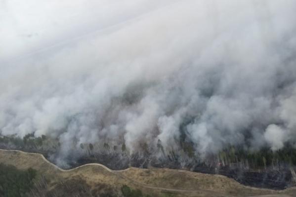 Жаркая погода повышает вероятность возникновения природных пожаров