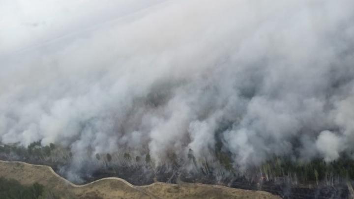 Жителей Зауралья предупреждают о высокой пожарной опасности