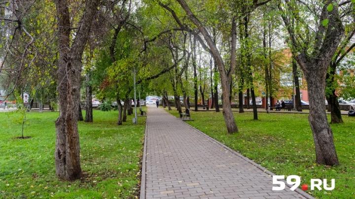 Первая неделя сентября в Прикамье будет теплой и сухой