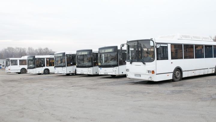 Автобусы №50, 51 и 67 будут работать по особому графику до 8 января