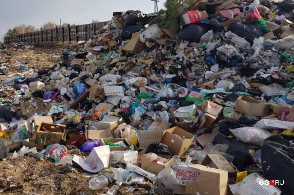 Типичная незаконная свалка — кучи бытового мусора