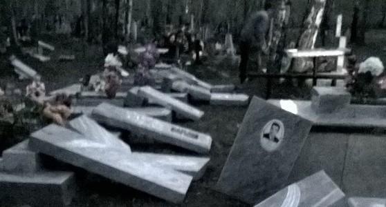 Вандалы разрушили кладбище села Коменки возле Богдановича