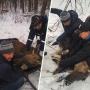 Спасенный охотниками в Башкирии лосенок скончался