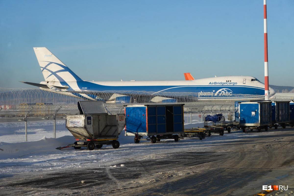 Цветы привезBoeing 747 из Амстердама
