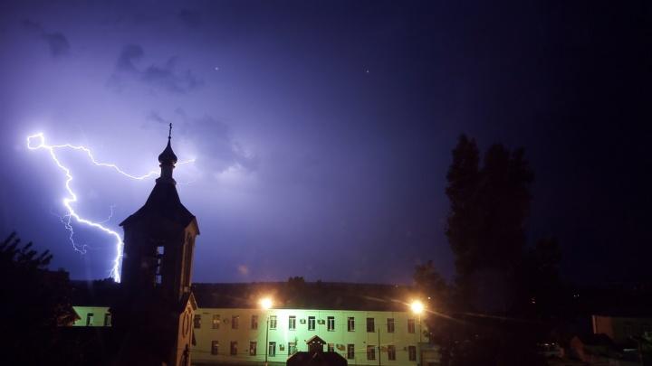 «Молния обвила лес»: в Волгоградской области запечатлели уникальные кадры грозы — фоторепортаж