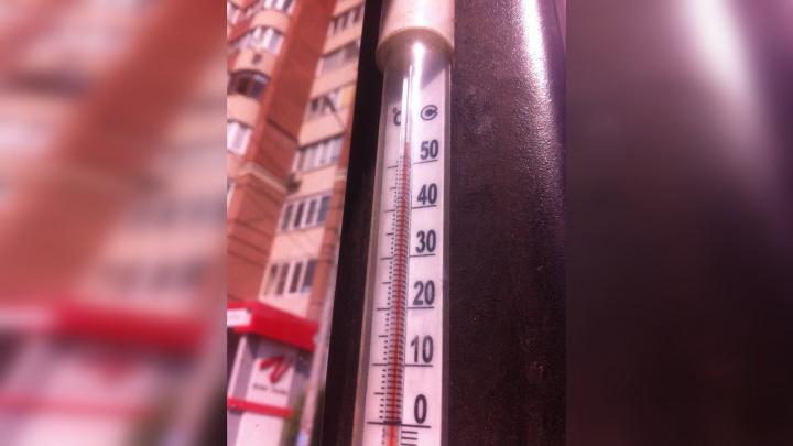 Перевалило за 50 градусов: самарец зафиксировал новый рекорд аномальной жары