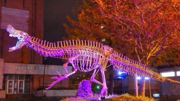 Фотохудожник светом раскрасил скелет динозавра в центре Ярославля
