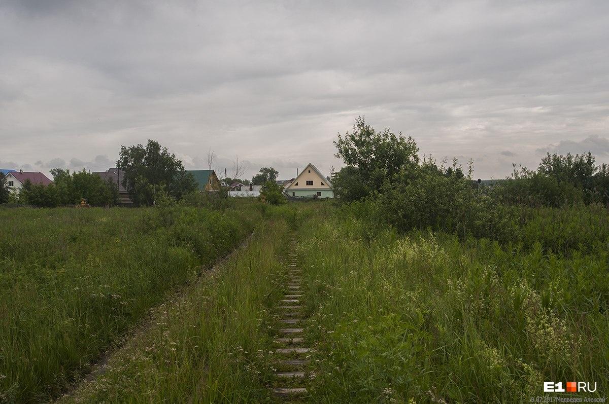 Остатки путей на перегоне от Балтыма к станции «Юбилейной»