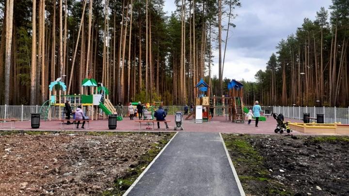 Под Екатеринбургом открыли велодорожку, ради которой вырубили 1,4 тысячи деревьев: показываем ее