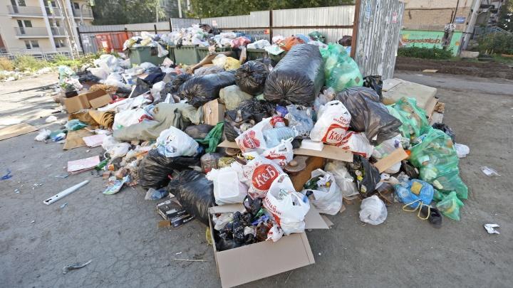Челябинская прокуратура готовит уголовные дела на виновных в мусорном коллапсе