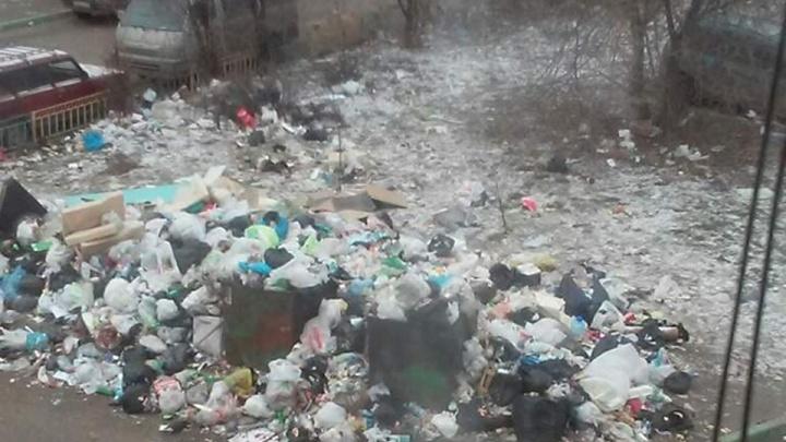 «Просто еще подождите»: в Черемушках уже третий месяц из-за «Нового вектора» не вывозят мусор