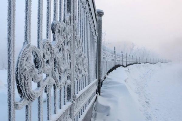 Чарующая красота дикого холода
