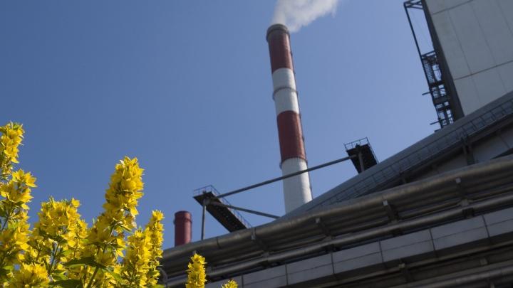 Старт отопительного сезона: энергетики ответят на вопросы новосибирцев