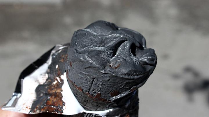 В Новосибирске появилось чёрное мороженое с углём