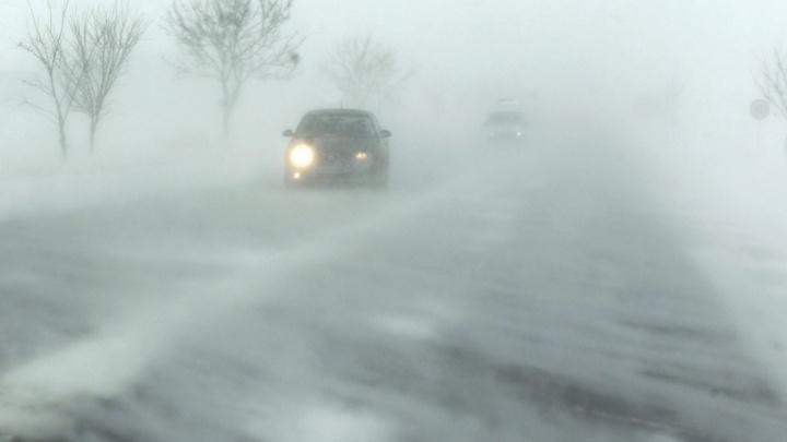 Порывы ветра и метель: МЧС экстренно предупредил о погоде в ближайшие часы