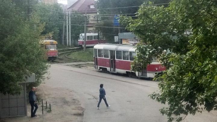 В Волгограде сильный ветер парализовал движение трамваев