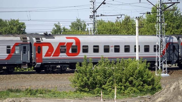 В Омской области трое подростков обкидали яблоками пассажирский поезд