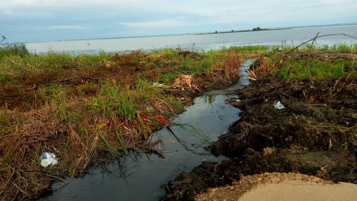 «Запах ужасный!»:в Ярославской области в озеро Неро слили фекалии