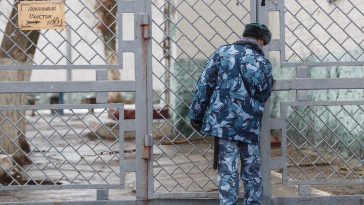 «Я тут с девочкой играю»: 10-летнюю волгоградку совращал педофил из Новосибирска