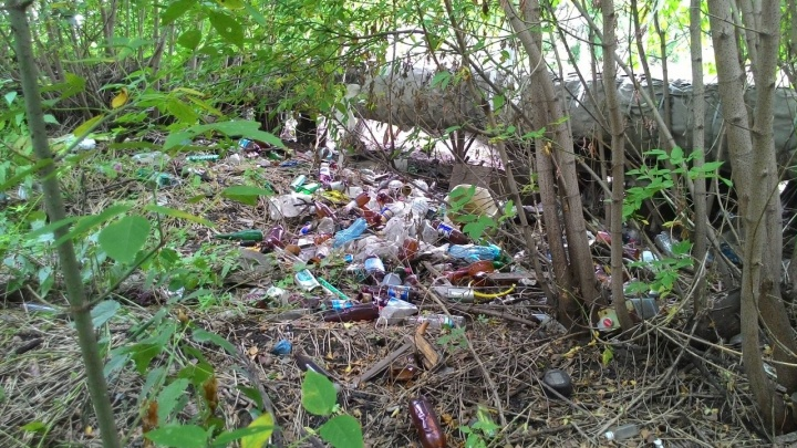 В Кемерово экологи нашли 11 стихийных свалок с мусором (фото)