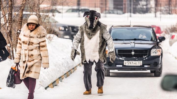 «Найди фермера и загрызи его»: актёр в костюме волка попытался уговорить детей открыть ему дверь