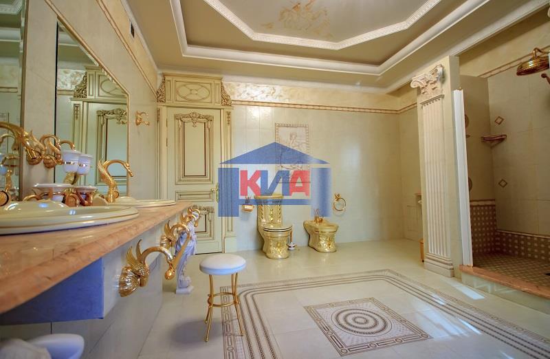 Всего четыре комнаты, зато в туалете — золотые унитазы