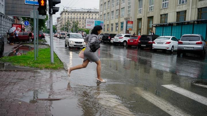 В Новосибирск идёт циклон с дождями и грозами