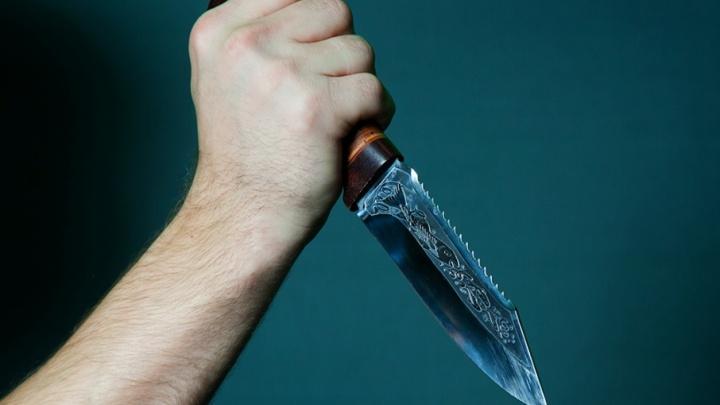 Житель Шатровского района ударил знакомую ножом 28 раз
