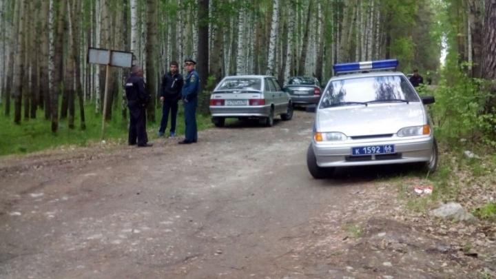 Перед поисковой группой возле посёлка Рефтинский, где ищут 4-летнего мальчика, встал на дыбы медведь