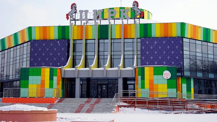«Животное молодое, играет»: в Омском цирке леопард напал на помощника дрессировщика