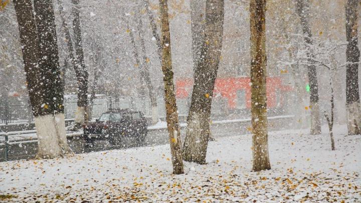 День жестянщика и красота! Как Самарская область пережила первый снегопад