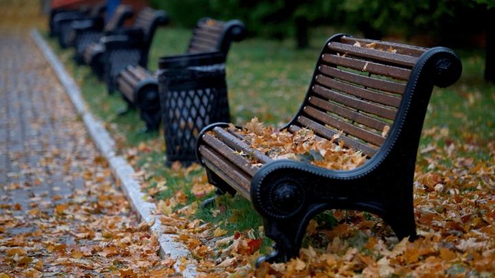 Ветер с дождем: какая погода ждет жителей Башкирии в начале недели