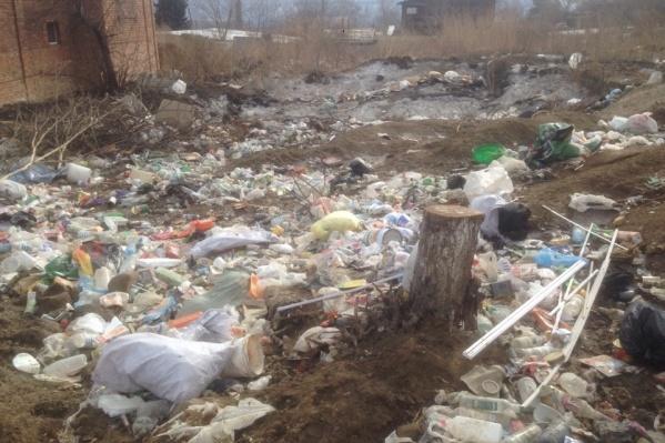Кучи мусора лежат рядом с жилыми домами